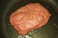 Επίγειο βόειο κρέας Στοκ εικόνα με δικαίωμα ελεύθερης χρήσης