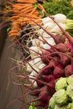 Επίδειξη διάφορων ραδικιών και καρότων λαχανικών ρίζας σε Brigh στοκ εικόνες
