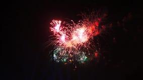 Επίδειξη πυροτεχνημάτων τη νύχτα στο μαύρο υπόβαθρο Φωτεινές κόκκινες πράσινες κίτρινες εκρήξεις λάμψης Εκπληκτικά όμορφος φιλμ μικρού μήκους