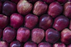 Επίδειξη των τακτοποιημένων κόκκινων μήλων στοκ φωτογραφία με δικαίωμα ελεύθερης χρήσης