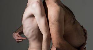 Επίπεδες και μεγάλες κοιλιές Λίπος και λεπτοί αρσενικοί κορμοί υγιής ανθυγειινός Τακτοποίηση και λιπαρός Διατροφή και πέρα από τη στοκ εικόνες