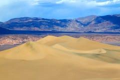 επίπεδη άμμος mesquite αμμόλοφων Στοκ Εικόνα