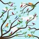 Επίπεδη διανυσματική απεικόνιση των όμορφων πουλιών στους κλάδους ελεύθερη απεικόνιση δικαιώματος