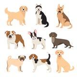 Επίπεδη συλλογή σκυλιών ύφους Φυλές σκυλιών κινούμενων σχεδίων καθορισμένες Απεικόνιση που απομονώνεται διανυσματική Στοκ Εικόνες