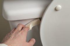 επίπεδη τουαλέτα Στοκ φωτογραφία με δικαίωμα ελεύθερης χρήσης