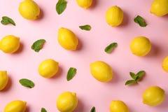 Επίπεδος βάλτε τη σύνθεση με τα φρέσκα ώριμα λεμόνια στοκ εικόνες