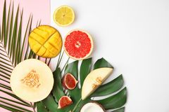 Επίπεδος βάλτε τη σύνθεση με το πεπόνι, άλλα φρούτα στοκ φωτογραφίες με δικαίωμα ελεύθερης χρήσης