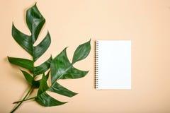 Επίπεδος βάλτε το κενό βιβλίο για την εργασία δύο σχεδίου φύλλο στο κίτρινο χρώμα κρητιδογραφιών Στοκ εικόνα με δικαίωμα ελεύθερης χρήσης