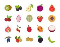 Επίπεδο διανυσματικό πακέτο φρούτων διανυσματική απεικόνιση