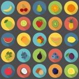Επίπεδα εικονίδια φρούτων καθορισμένα Στοκ Εικόνες