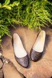 Επίπεδα μπαλέτου Snakeskin, παπούτσια των γυναικών σε έναν βράχο Στοκ Εικόνα
