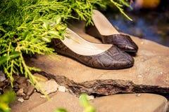 Επίπεδα μπαλέτου Snakeskin, παπούτσια των γυναικών σε έναν βράχο Στοκ Φωτογραφίες