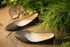 Επίπεδα μπαλέτου Snakeskin, παπούτσια των γυναικών σε έναν βράχο Στοκ φωτογραφία με δικαίωμα ελεύθερης χρήσης