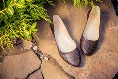 Επίπεδα μπαλέτου Snakeskin, παπούτσια των γυναικών σε έναν βράχο Στοκ εικόνες με δικαίωμα ελεύθερης χρήσης