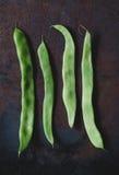 Επίπεδα πράσινα φασόλια Στοκ Εικόνες