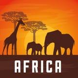 Επίπεδη απεικόνιση για το σχέδιο της Αφρικής Στοκ Φωτογραφίες