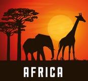 Επίπεδη απεικόνιση για το σχέδιο της Αφρικής Στοκ εικόνες με δικαίωμα ελεύθερης χρήσης