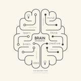 Επίπεδη γραμμική έννοια εγκεφάλου περιλήψεων εκπαίδευσης Infographic διάνυσμα Στοκ Φωτογραφία