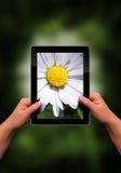 επίπεδη ταμπλέτα PC Στοκ εικόνα με δικαίωμα ελεύθερης χρήσης