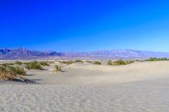 Επίπεδοι αμμόλοφοι άμμου Mesquite, κοντά στην κοιλάδα NP θανάτου φρεατίων Stovepipe στοκ εικόνα