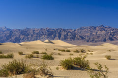 Επίπεδοι αμμόλοφοι άμμου Mesquite, κοντά στην κοιλάδα NP θανάτου φρεατίων Stovepipe στοκ εικόνα με δικαίωμα ελεύθερης χρήσης