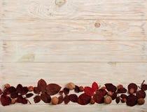 Επίπεδος βάλτε το πλαίσιο των πορφυρών φύλλων φθινοπώρου, των φουντουκιών και των ξύλων καρυδιάς ο Στοκ Φωτογραφία