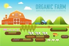 Επίπεδο αγρόκτημα στα του χωριού καθορισμένα δαιμόνια και τα σύνολα κεραμιδιών όργανα, λουλούδια, λαχανικά, φρούτα, σανός, αγροτι Στοκ Εικόνες