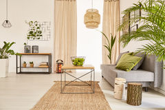 Επίπεδο με τις εγκαταστάσεις και τον καναπέ στοκ εικόνες