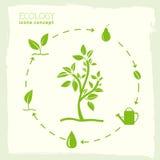 Επίπεδο σχέδιο της οικολογίας, περιβάλλον, πράσινος καθαρός Στοκ Φωτογραφία