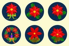 Επίπεδο σύνολο εικονιδίων, σχέδιο λουλουδιών poinsettia Διανυσματική απεικόνιση