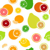 Επίπεδο φρέσκο άνευ ραφής σχέδιο εσπεριδοειδών Κίτρο, λεμόνι, γκρέιπφρουτ, ασβέστης, μανταρίνι, pomelo, πορτοκάλι, πορτοκάλι αίμα Στοκ εικόνα με δικαίωμα ελεύθερης χρήσης