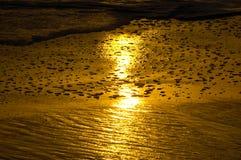 Επίπεδο tideland λάσπης στο ηλιοβασίλεμα Στοκ φωτογραφία με δικαίωμα ελεύθερης χρήσης