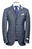 Επίσημο κοστούμι στη μόδα Στοκ εικόνες με δικαίωμα ελεύθερης χρήσης