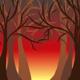 επίσης corel σύρετε το διάνυσμα απεικόνισης autumnal forest Στοκ Φωτογραφία