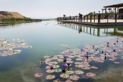 Επίσκεψη σε Hiriya (πάρκο του Ariel Sharon) Στοκ Φωτογραφία