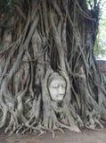 Επίσκεψη Thailandia Ayutthaya Στοκ εικόνα με δικαίωμα ελεύθερης χρήσης