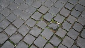 Επίστρωση τούβλου Στοκ εικόνες με δικαίωμα ελεύθερης χρήσης