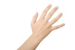 επίτευξη χεριών Στοκ εικόνες με δικαίωμα ελεύθερης χρήσης