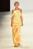 Επίδειξη μόδας Chaddie Στοκ Εικόνες