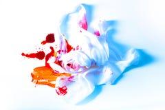 Επίδεσμοι και αίμα Στοκ φωτογραφίες με δικαίωμα ελεύθερης χρήσης