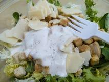 επί του σκάφους σαλάτα με το άσπρο πλαστικό δίκρανο, έτοιμες τροφές, τρέχον λ στοκ φωτογραφίες με δικαίωμα ελεύθερης χρήσης
