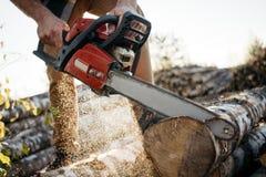 Επαγγελματικά lumberman πριονίζοντας δέντρα στο πριονιστήριο στοκ φωτογραφία με δικαίωμα ελεύθερης χρήσης