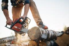 Επαγγελματικά lumberman πριονίζοντας δέντρα στο πριονιστήριο στοκ εικόνα