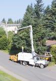 επαγγελματικά trimmers δέντρων Στοκ εικόνα με δικαίωμα ελεύθερης χρήσης