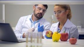 Επαγγελματικές έρευνες που εξετάζουν τα γενετικά τροποποιημένα τρόφιμα απόθεμα βίντεο