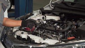 Επαγγελματικές μηχανικές επίπεδο πετρελαίου ελέγχου και μηχανή ενός αυτοκινήτου απόθεμα βίντεο