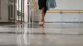 Επαγγελματική άσκηση χορευτών μπαλέτου κοντά σε έναν φραγμό μπαλέτου απόθεμα βίντεο