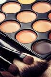 Επαγγελματική παλέτα makeup στοκ φωτογραφία
