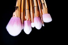 Επαγγελματική συλλογή βουρτσών makeup Στοκ εικόνα με δικαίωμα ελεύθερης χρήσης