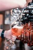 Επαγγελματική χύνοντας μπύρα μπάρμαν της πρώτης βρύσης στοκ φωτογραφία με δικαίωμα ελεύθερης χρήσης
